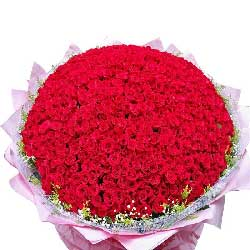 999朵红玫瑰,生生世世爱你不变