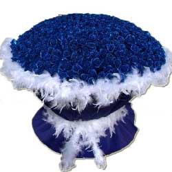 999朵蓝玫瑰,生命里最爱的人