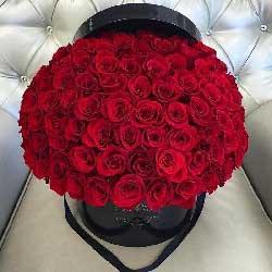 52朵红玫瑰,桶装鲜花,愿与你共度千秋万岁
