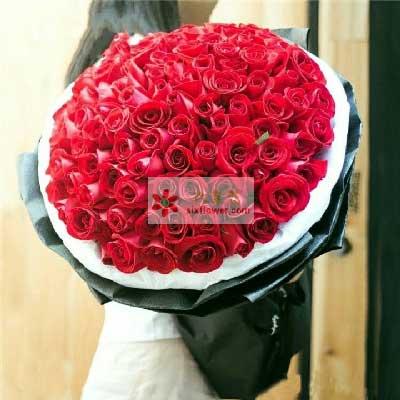 99朵红玫瑰,迫不及待的爱你