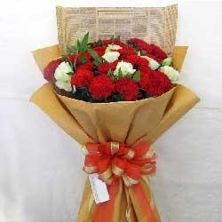 18朵红色康乃馨,祝您平安健康