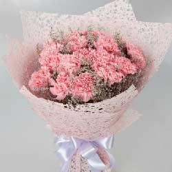 18朵粉色康乃馨,快乐美满