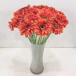 16朵橙色扶朗花,愿你一帆风顺!