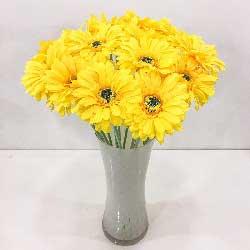 16朵黄色扶郎花,生活精彩纷纷