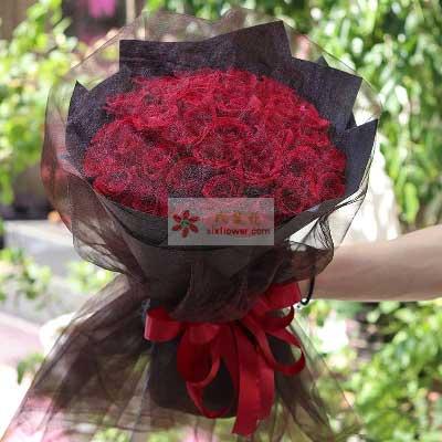 66朵红玫瑰,此生为你而沉醉