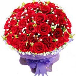 66支红玫瑰,爱的浪花