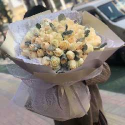爱每日如新/99枝香槟玫瑰