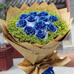 11朵蓝色玫瑰,与你相逢是上帝的恩赐