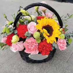玫瑰+康乃馨,小花篮,平安祝福