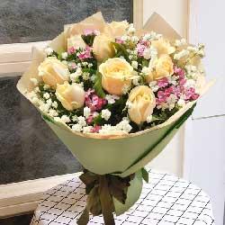 9朵香槟玫瑰,和谐美满的爱情