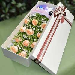11朵香槟玫瑰,礼盒装,我的世界只有你懂