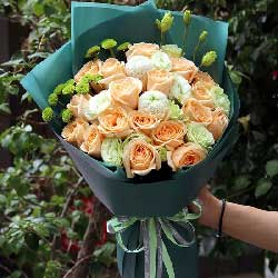 17朵香槟玫瑰,思念你的心声