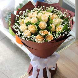22朵香槟玫瑰,与你同游人生
