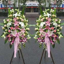 桔梗+玫瑰,三脚架花篮,祝你成功!