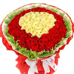 99朵玫瑰,你是我的爱神