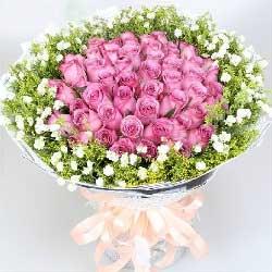 34朵紫玫瑰,你是我宁静的港湾