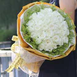 35朵白玫瑰,为你而有爱