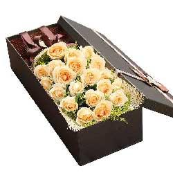 20朵香槟玫瑰,礼盒装,幸福幕幕又朝朝