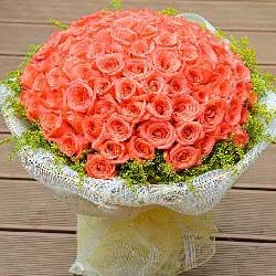 99朵粉玫瑰,小宝贝永远快乐