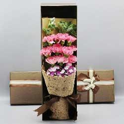 10朵粉色康乃馨,礼盒装,年年有福