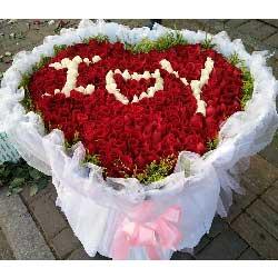 365朵玫瑰,爱上加爱