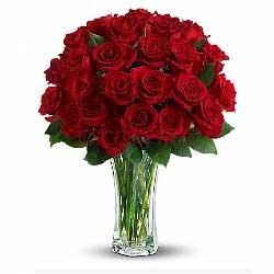 33朵红玫瑰,今生永想你