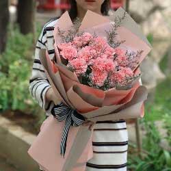 19朵粉色康乃馨,快快乐乐