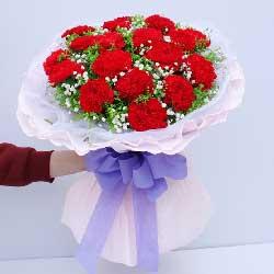 16朵红色康乃馨,最爱母亲