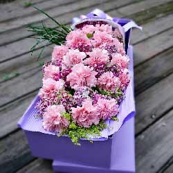 20朵粉色康乃馨,礼盒装,快乐幸福随
