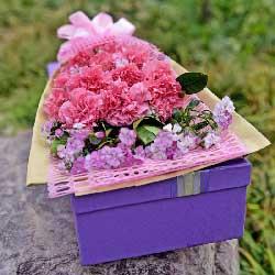 12朵粉色康乃馨,礼盒装,潇洒度时光