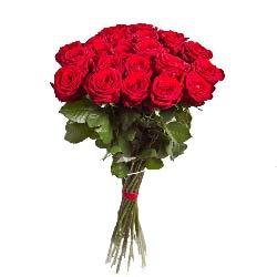 25朵红玫瑰,爱你之心久久