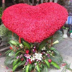 999朵红玫瑰,永恒的相爱