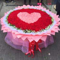 999朵玫瑰,爱恋你