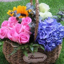9朵玫瑰,2朵向日葵,开心快乐