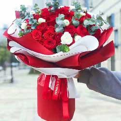 甜蜜的爱情/52枝红色玫瑰