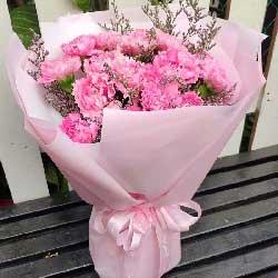 我爱您/19枝粉色康乃馨