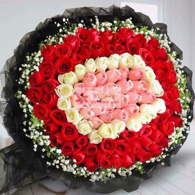每天都快乐/99支玫瑰