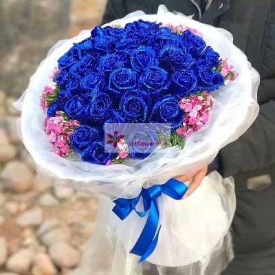 爱的见证/33枝蓝玫瑰