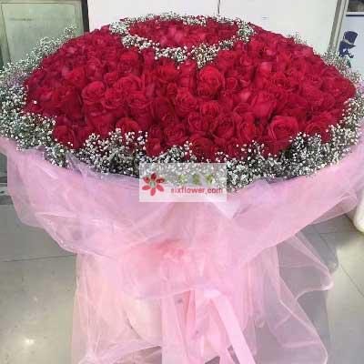 一辈子的爱/520支玫瑰