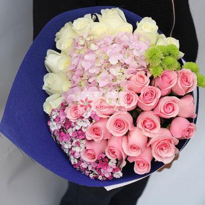 每天与你共度/33支玫瑰