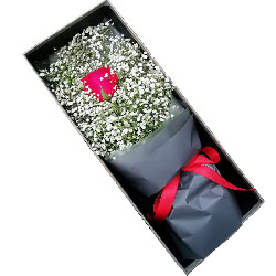 爱包围你/满天星玫瑰礼盒