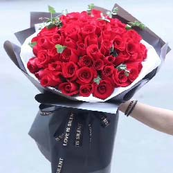 你是我未来的人/66支玫瑰