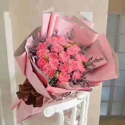 妈妈您辛苦了/19支粉色康乃馨