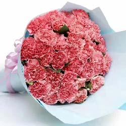 快乐幸福/33枝粉色康乃馨