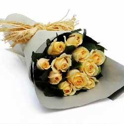 祝你未来精彩/11枝黄玫瑰