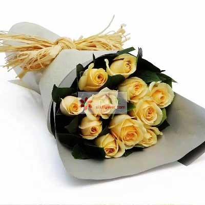 祝你未来精彩/11支黄玫瑰