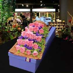 幸福如意/20枝粉色康乃馨礼盒