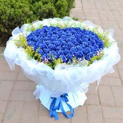 99支蓝玫瑰,我的爱人