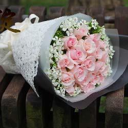 19枝粉色佳人玫瑰/远方的爱人