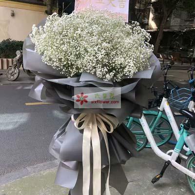白色满天星/三脚架开业花篮/日进斗金